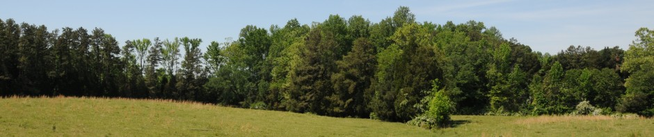 The Dodson Farm, Mecklenburg County, Virginia