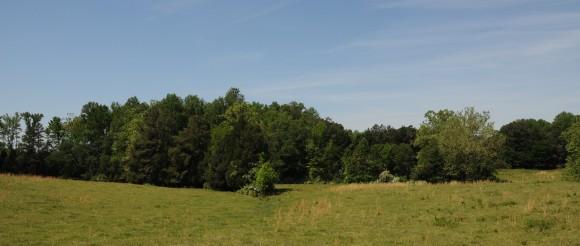 The Dodson Farm: Mecklenburg County, Virginia