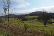 Allegany County near Independence Township