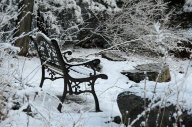 Snowy invitation