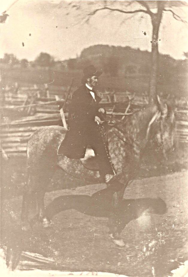 Mystery on a Horse