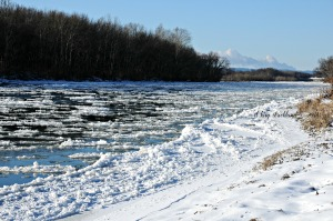 Floe on the Susquehanna