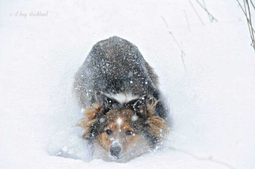 SNOW!!