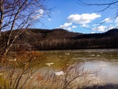 Susquehanna River near Moconaqua