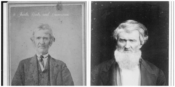 Minor Elders Collage