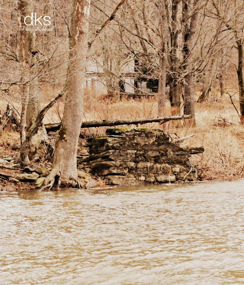 Remnants on Bowman's Creek