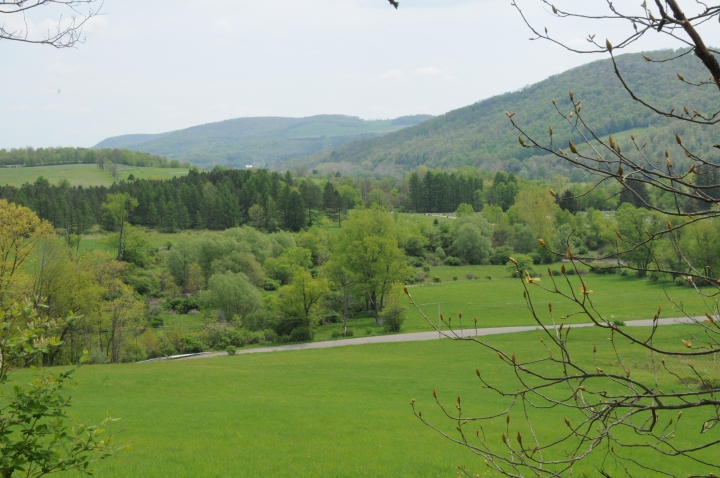Landscape.  Westfield, Tioga County, Pennsylvania.