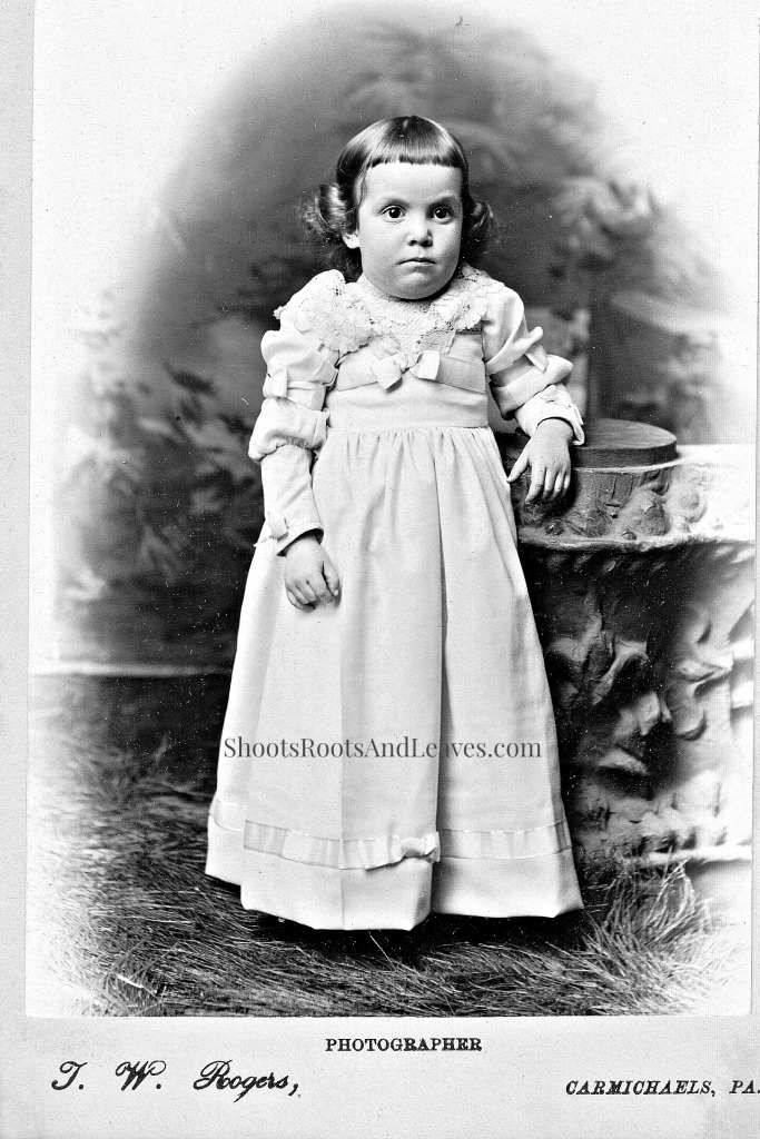 Florence McClure Titus, Thomas W. Rogers, photographer, Carmichaels, Pennsylvania, about 1892. The Minor Family Album, page 22: Author's Collection.