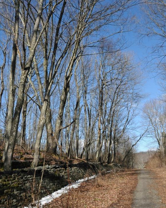 path-west